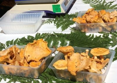 Girolles on a market